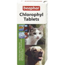 Chlorophyl Tablets : Contre...