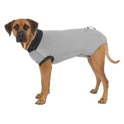 Body de protection pour chien