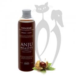 "Shampoing ""Havane"" - Anju..."