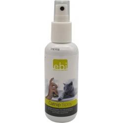 Spray Catnip : Herbe à chat...
