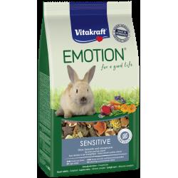 Emotion pour Lapins nains -...