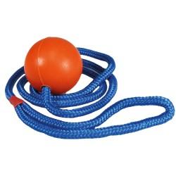 Balle avec corde pour chien