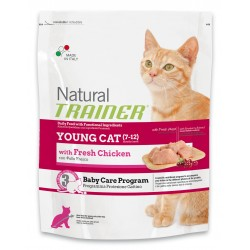 Young Cat - Poulet -...