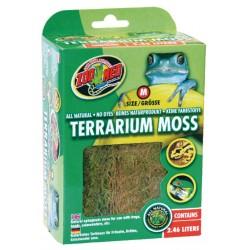Mousse pour terrarium -...