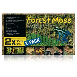 Forest Moss - Substrat pour...