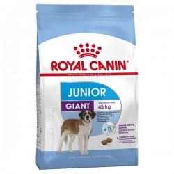 Giant - Junior - 15 kg