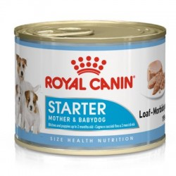 Starter - Puppy - Mousse -...