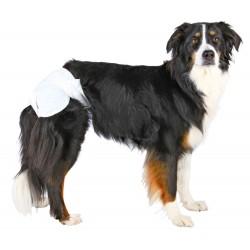 Couches pour chiens femelles